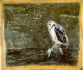 Bird and the Sea- Morris Graves