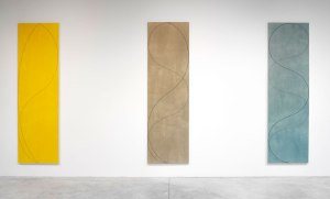 Column Paintings- Robert Mangold