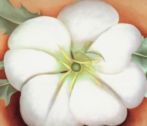 White Flower on Red Earth- Georgia O'Keeffe