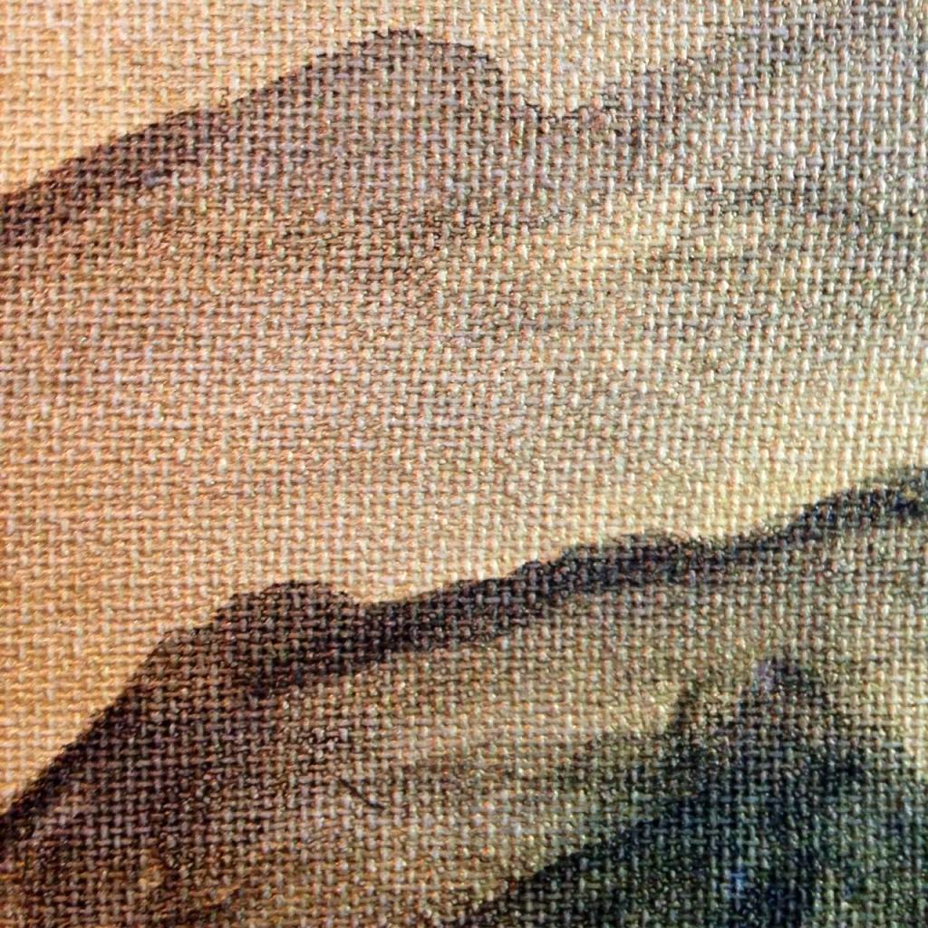 Close-Up 3 Fuji- Tribute to Kishi Ganku Linda Cleary 2014 Acrylic on Canvas