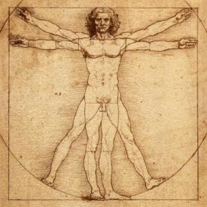 Vitruvian Man- Leonardo da Vinci