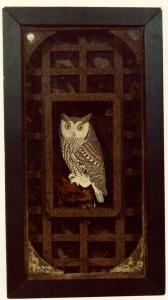 Untitled (Grand Owl Habitat)- Joseph Cornell